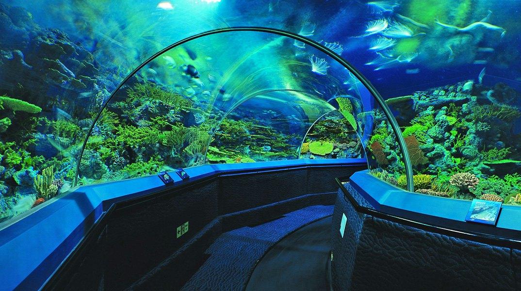壁纸 海底 海底世界 海洋馆 水族馆 桌面 1074_600