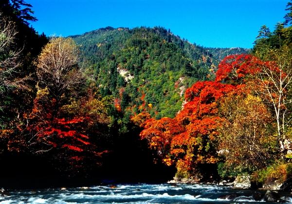 秋季适合情侣旅行的10个景点